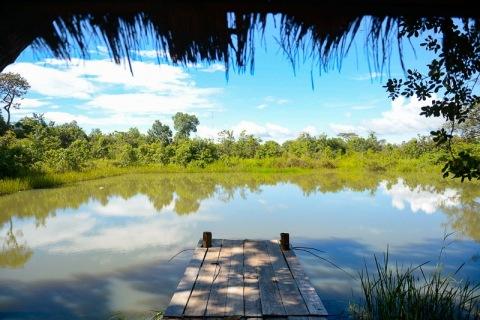 1_BeeBob-Grundstück-Kambodscha012