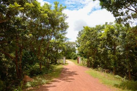 BeeBob-Grundstück-Kambodscha010